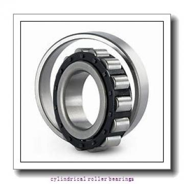 25 mm x 47 mm x 30 mm  SKF NNF 5005 ADB-2LSV  Cylindrical Roller Bearings